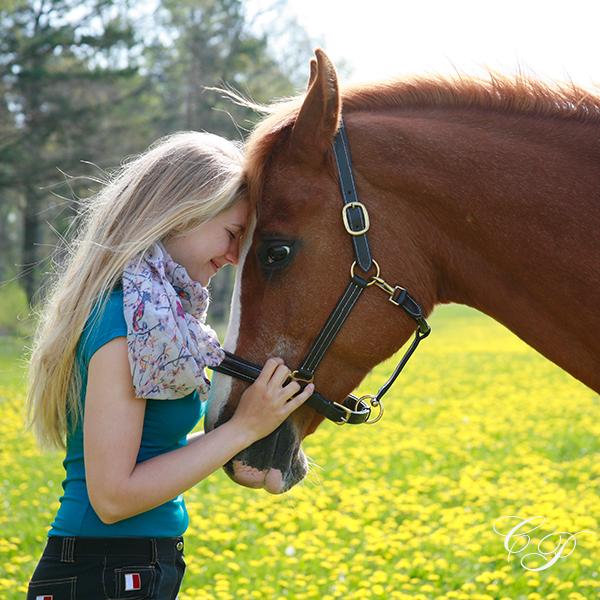 Pferdefotografie-Cornelia-Paul-01