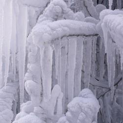 Fotografie Cornelia Paul - Sächsische Schweiz - Detailfotografie - Winter