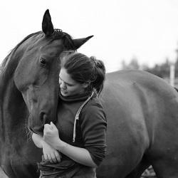 Pferdefotografie Cornelia Paul 6